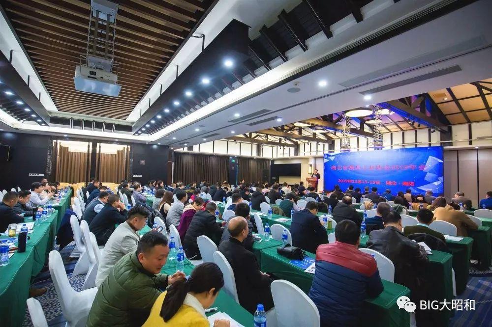 大昭和参加湖北模具工业协会2019年年会并做主题分享