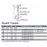 波龙D5x50mm 陶瓷杆红宝石针(For TC52/53/54/76)  ECP03.8000-020.050.05